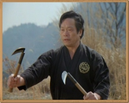 "SOKE TERUO HAYASHI Founder, Hayashi-ha Shito-ryu Kai (From the documentary, ""Budo: The Art of Killing"")"